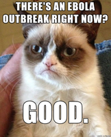 Grumpy Cat loves dangerous virus outbreaks. by SharpySaber