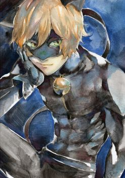 Chat Noir by SesameFruit