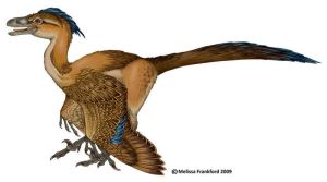 Feathered Dromeosaur by mmfrankford