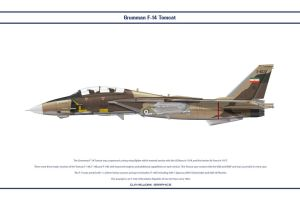 F-14A Iran 3 by WS-Clave