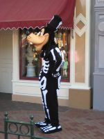 Skeleton Goofy by disneyland-stock