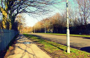 Your Empty Road by frankcom
