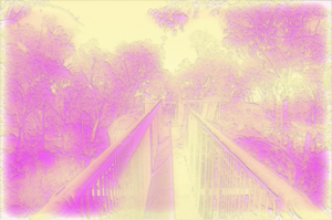 KCS_BD_Trees_07 by KymsCave-Stock