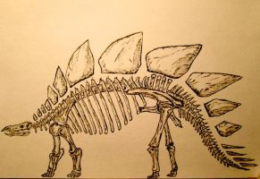 Stegosaurus by CaptainCommando10000