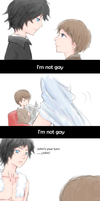 I'm not gay by Nile-kun