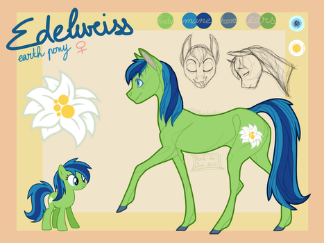 Edelweiss|reference sheet commission by Perle-de-Suie