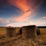 .: Late Evening Hay Bails :. by Dave-Ellis