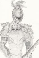 Knight by momade