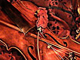 violin texture by mirrorimagestock