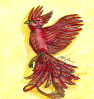 Fawkes the phoenix - Harry Potter by brenda--amancio
