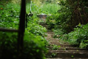 Stairs to Buda by D250Laboratories
