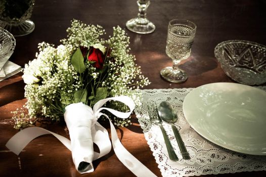 The Brides Place Setting by UndergroundEvolution