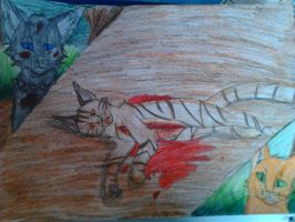 Tigerstar death by Raven-And-Amber