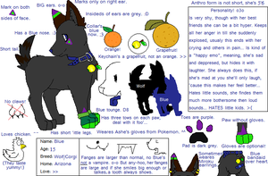 Blue's New And Improved Ref by Miiroku
