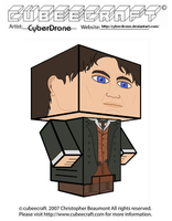 Cubeecraft - The 8th Doctor 'Ver2' by CyberDrone