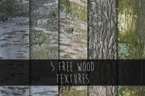 5 free wood textures by WingsOfKaviel
