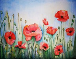 poppies by AnyaMorrison
