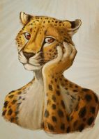 Sulky Cheetah by birdsandgirls