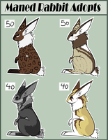 Maned Rabbit Adopts 2 CLOSED by Rhenae