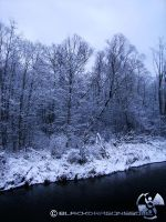 The Frosty Black River,,, by blackdragonssoul