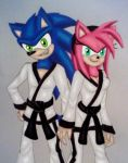 SonAmy: Karate Lovers by GothNebula