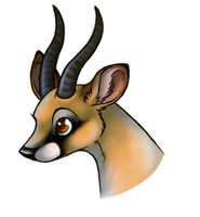 gazelle bambi by Maquenda