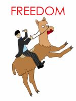Freedom by DoctorWho98