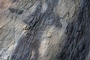 Stone Texture 3 by syccas-stock