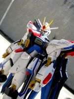 Strike Freedom 9 by MaftyNavue