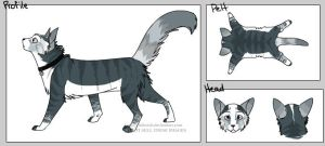 Cat Character by Shadowdannie