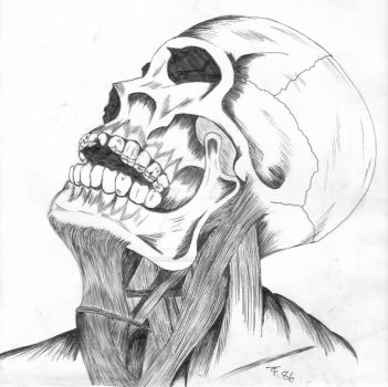 Skullduggry by Abigtreehugger
