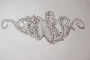 OCTOPUS BaW by mmarigarcia