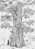 A tree with a sixteen-house by Latyshoffa