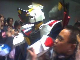 strike freedom stolen pic by karlonne