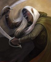 Drow warrior by CG-Warrior
