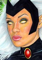 Storm Sketch Card 3 by veripwolf