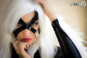 black cat cosplay =^.^= by IdaKillerQueen