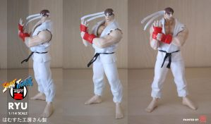 RYU 1/14 RESIN KIT by rgm501
