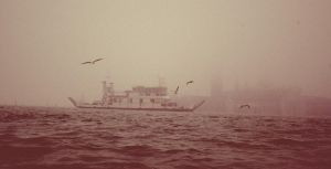 Foggy view. by Umbrellakid