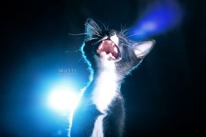 Screaming by New-Musti