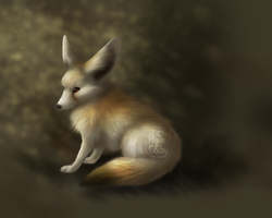 Yes, a Fennec Fox by Peace-Colby