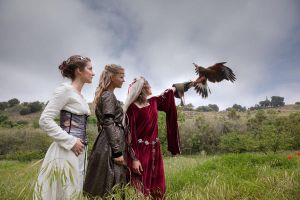 Medieval Ladies and Falcon by Costurero-Real