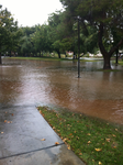 Flash Flooded UNLV by INF3CT3D-D3M0N