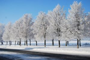 winter stock VII by amka-stock