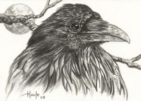 ACEO Raven by HOULY1970