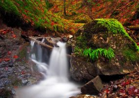 Small waterfall by lica20