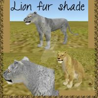 FH lion fur shade (WITHOUT VISIBLE EDGES) by wolf-NaKomis