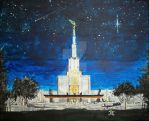 A Shooting Star over Denver CO LDS Temple by Ridesfire