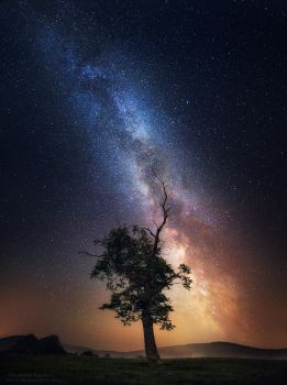 Reach the Stars by FlorentCourty
