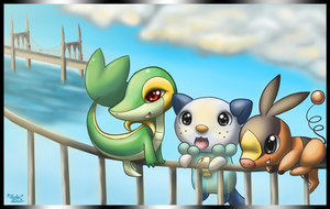 5th Generation Starters by LuckyLucario